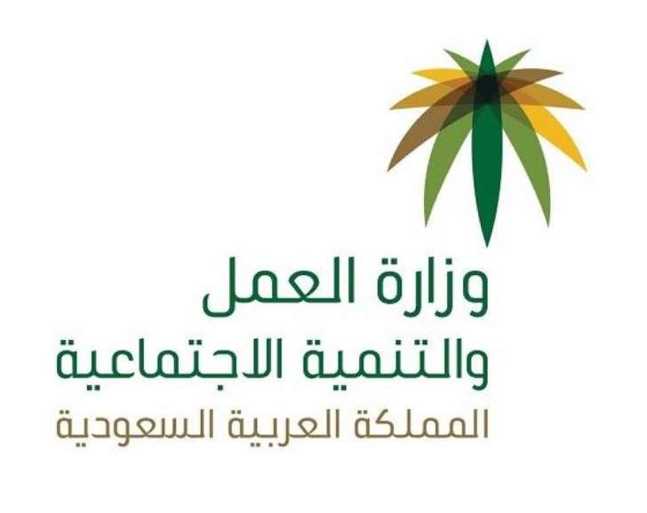 وزارة العمل توضح عقوبة التحرش في المنشآت الخاصة