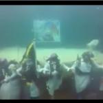 """احتفالا باليوم الوطني سعوديون يؤدون """"العرضة"""" تحت الماء"""