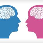 """دراسة تكشف """"الفارق المذهل"""" بين دماغ الرجل والمرأة.."""
